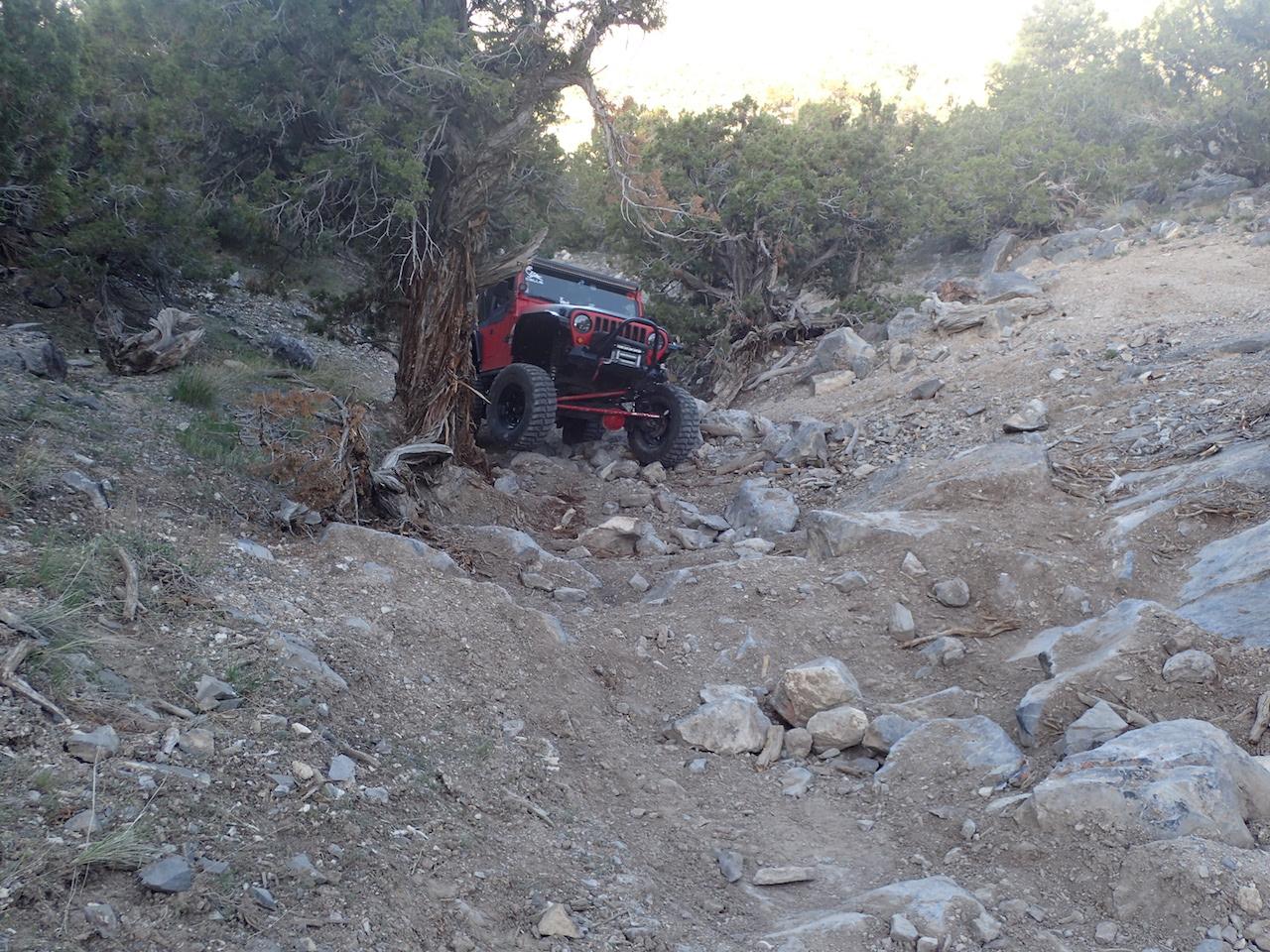 Sidewinder Exit - Waypoint 5: Hammered Tree Hill