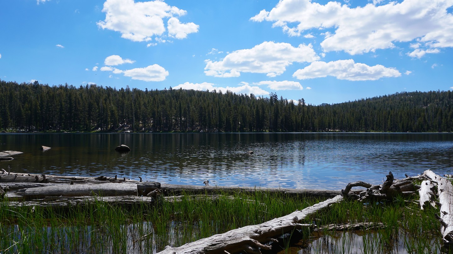 26E213 - Coyote Lake Trail - Waypoint 12: End