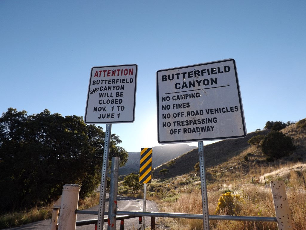 Camping: Butterfield Canyon
