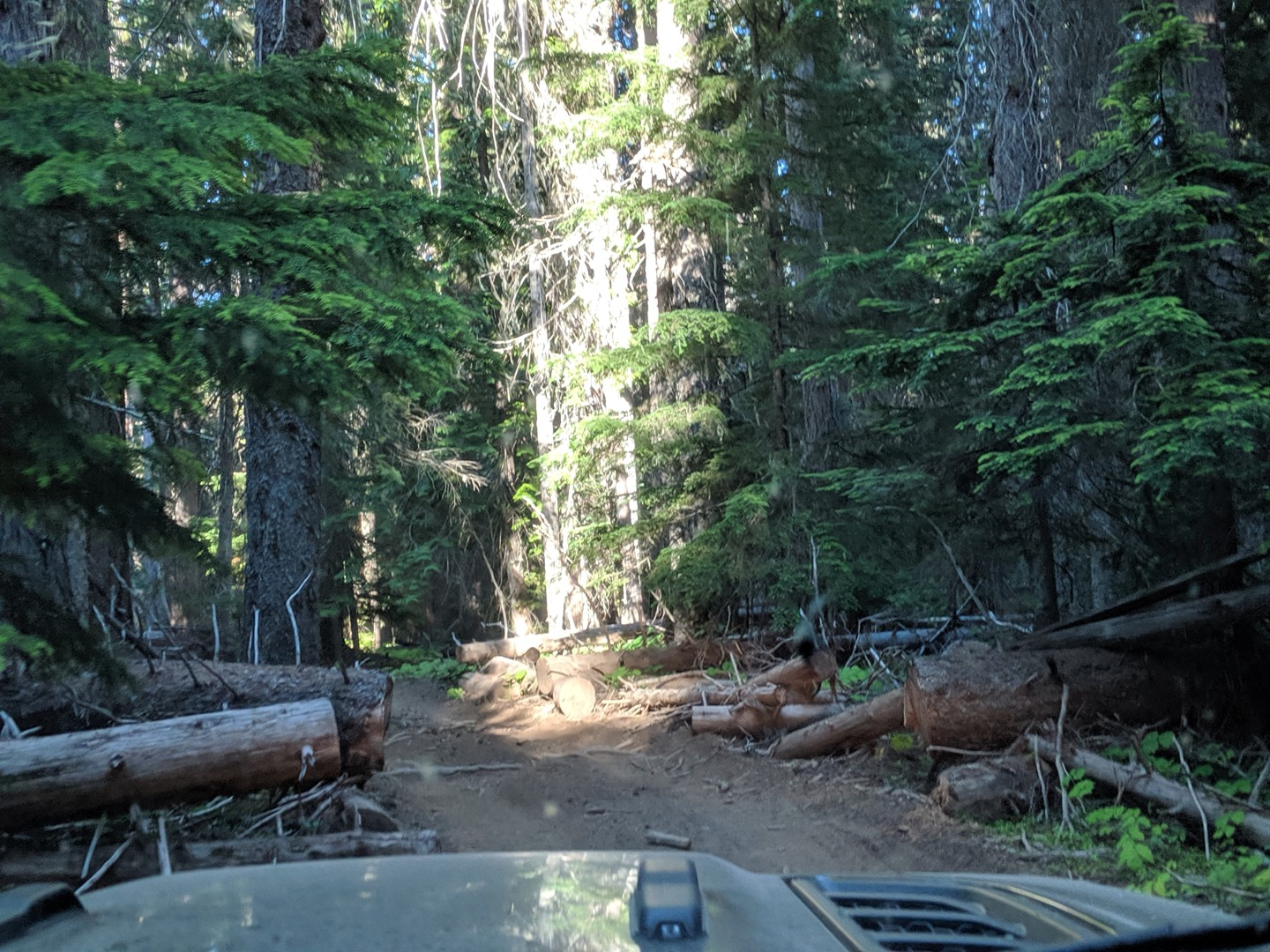Trail Review: Naches Trail