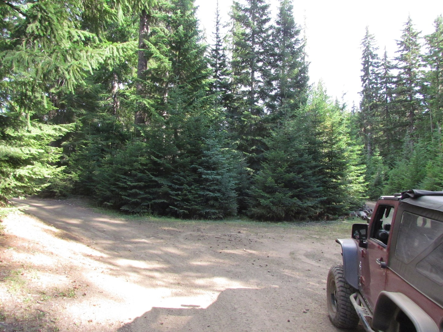 Naches Trail - Waypoint 22: Trail intersection / stay left