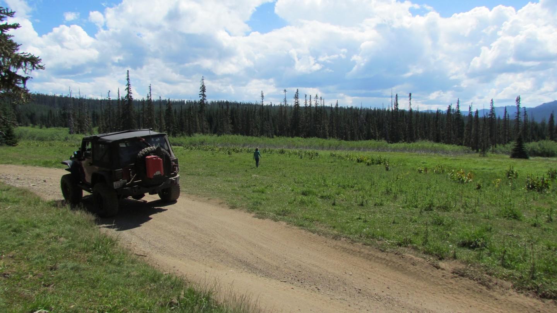 Naches Trail - Waypoint 10: Mountain Meadow - Straight