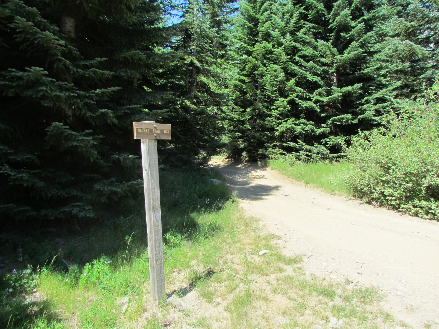Naches Trail - Waypoint 9: Trail intersection / Start point 3