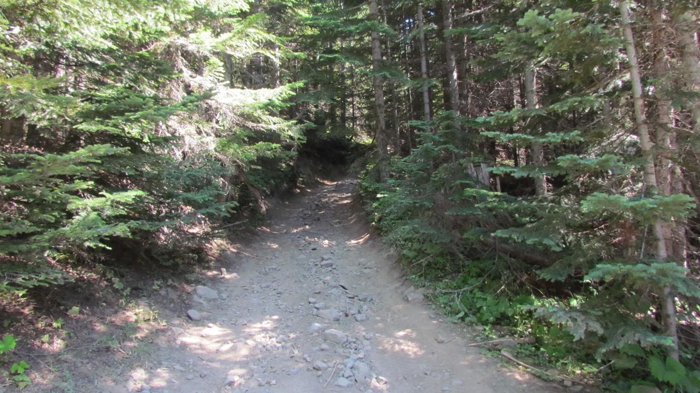 Naches Trail - Waypoint 7: Startpoint 2
