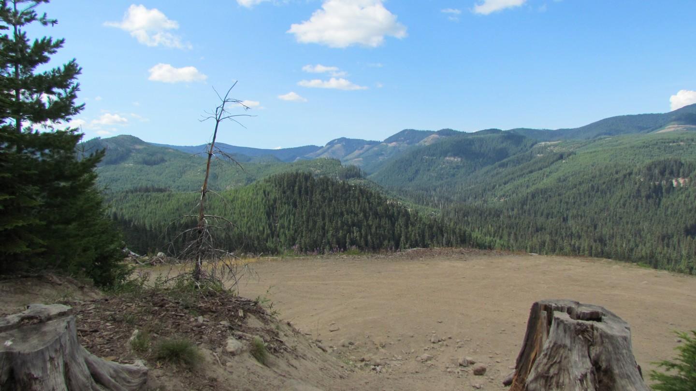 Naches Trail - Waypoint 16: Scenic View - Straight
