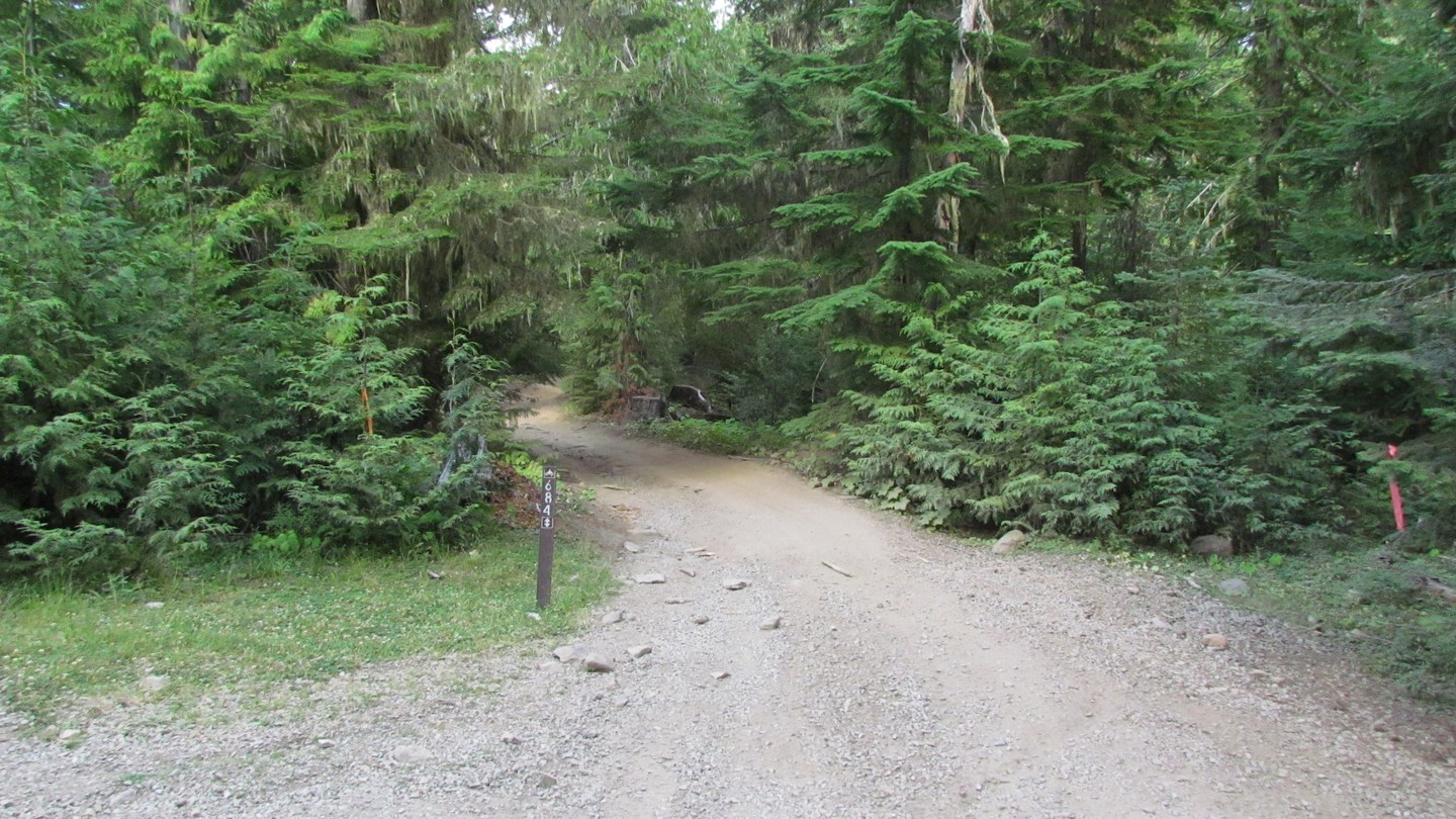 Naches Trail - Waypoint 19: Trail Intersection - Straight
