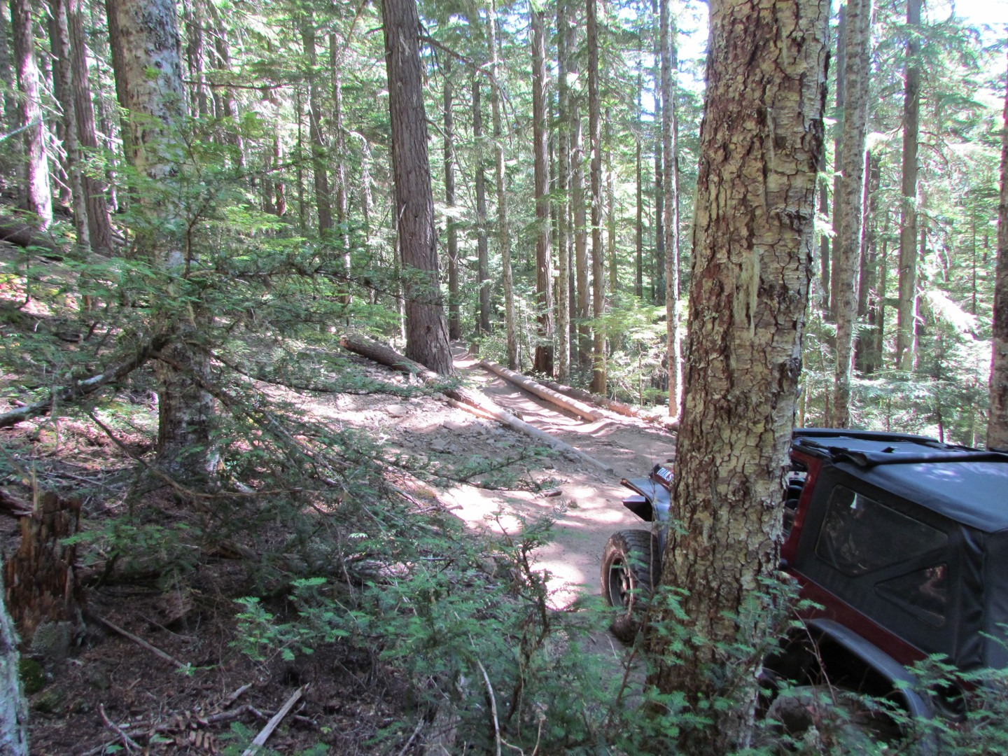 Naches Trail - Waypoint 5: Trail intersection / stay right