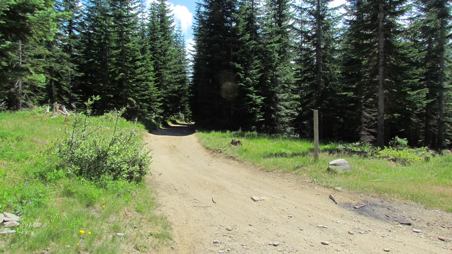Naches Trail - Waypoint 9: Trail Intersection - Startpoint 3 - Straight