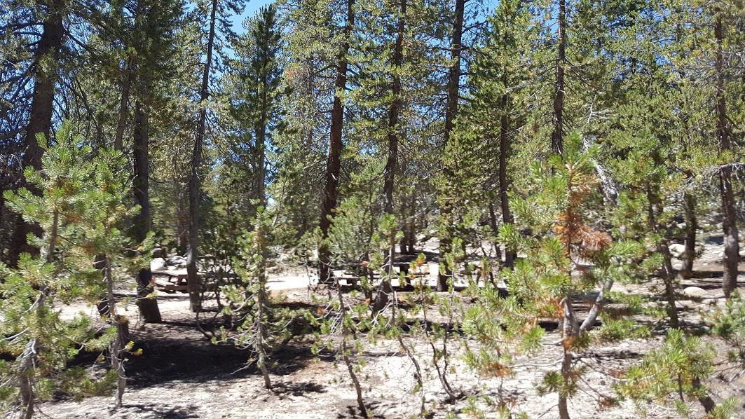 7S32 - Voyager Rock - Waypoint 5: Camp Ground