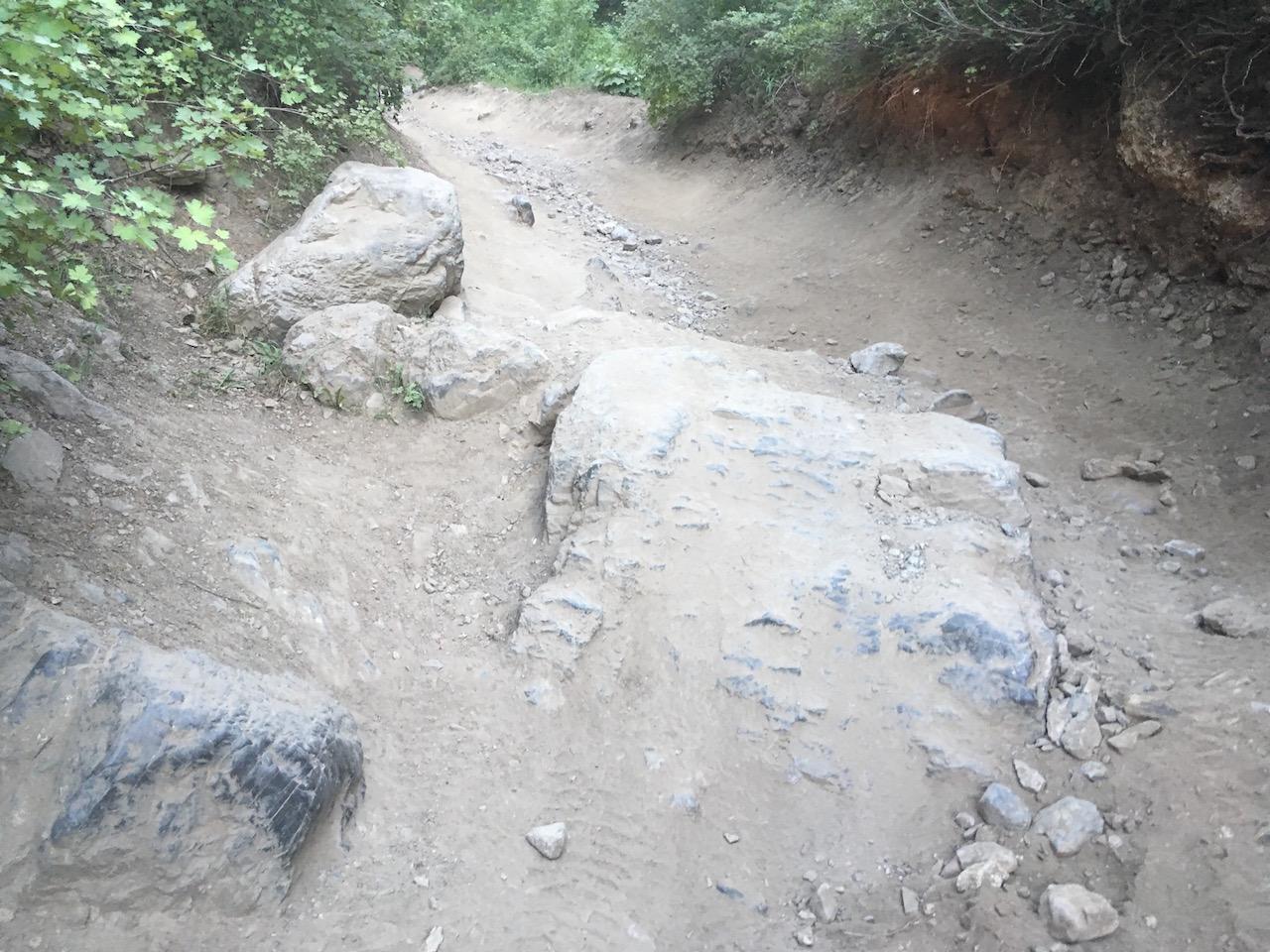 Forest Lake - Waypoint 7: Big Rock