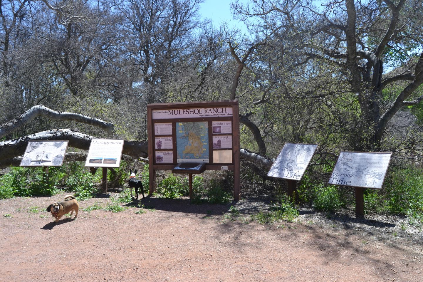 Jackson Cabin/Muleshoe Ranch Road - Waypoint 5: Sign in Kiosk - TrailHead of FR691 4x4