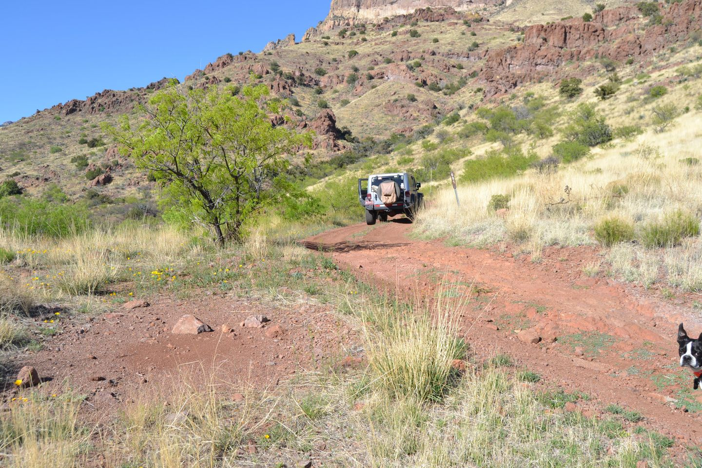 Jackson Cabin/Muleshoe Ranch Road - Waypoint 15: Natural Rock Bridge