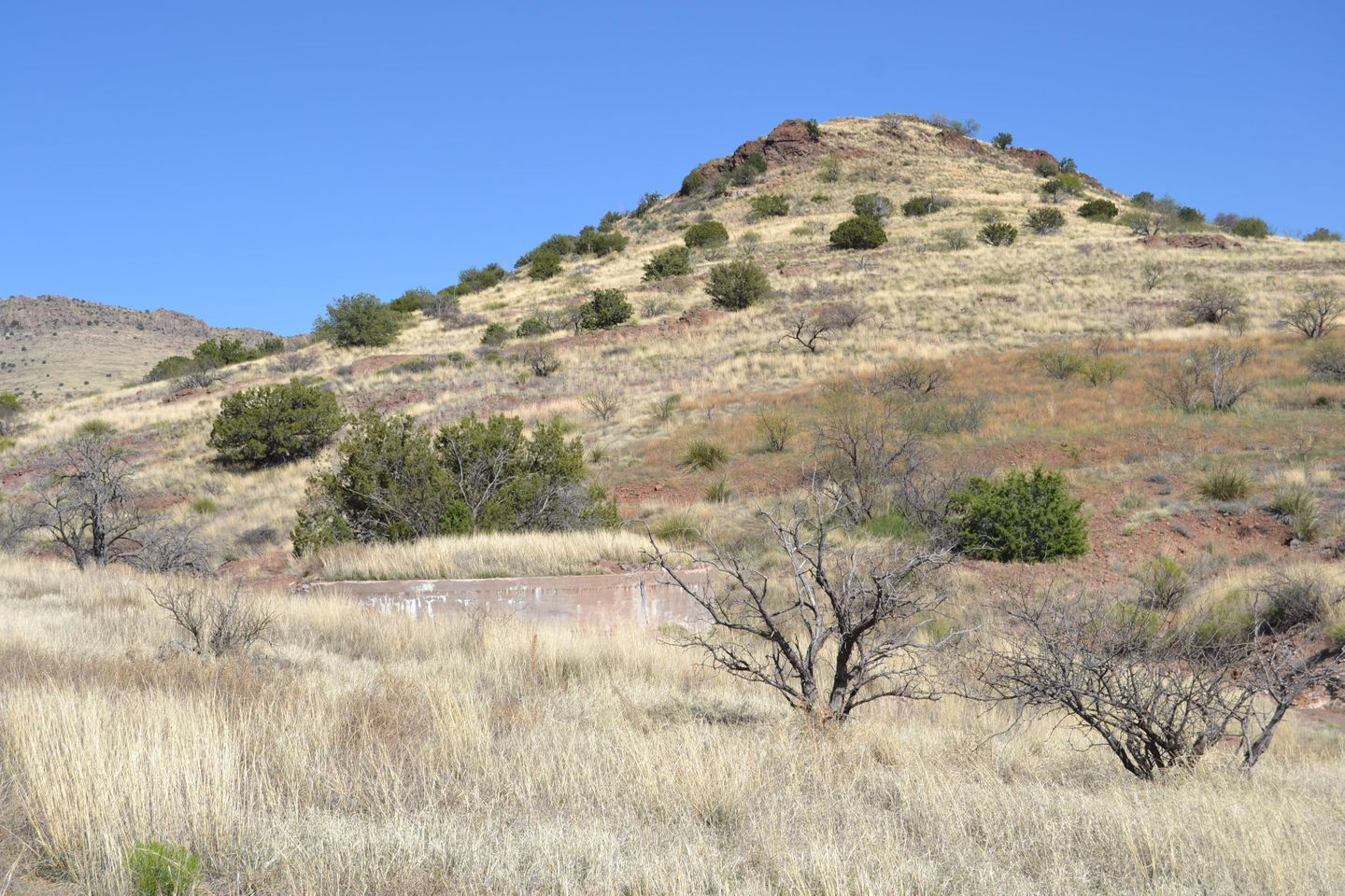 Jackson Cabin/Muleshoe Ranch Road - Waypoint 11: Pride Ranch Cabin Site & Windmill