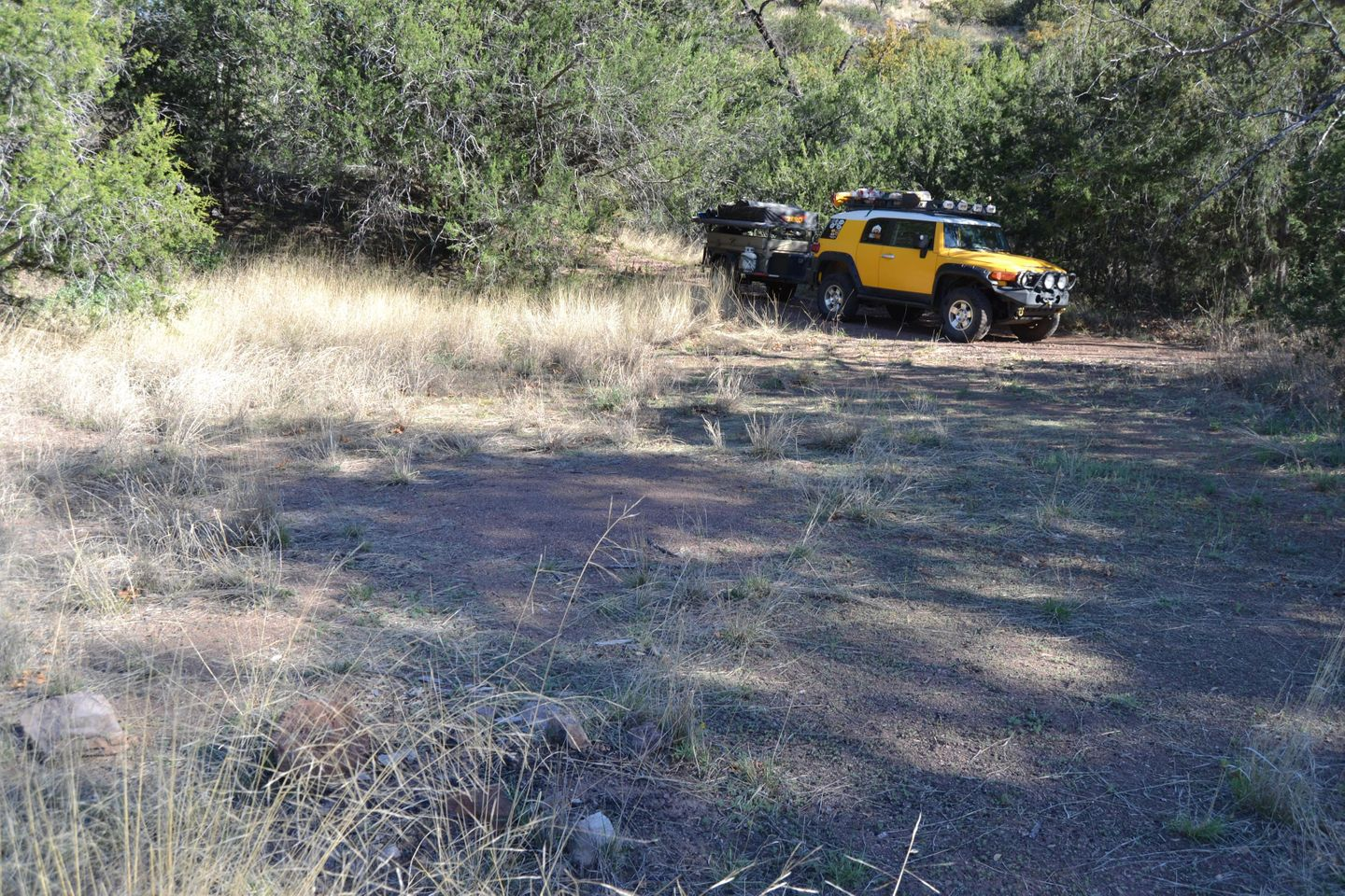 Jackson Cabin/Muleshoe Ranch Road - Waypoint 17: Sycamore Canyon Camp Site(s)