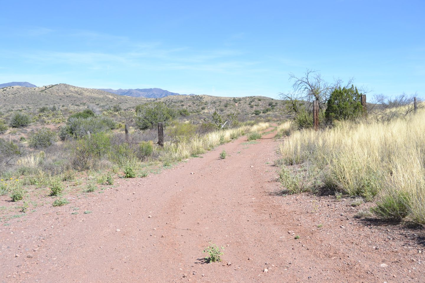 Jackson Cabin/Muleshoe Ranch Road - Waypoint 6: El Paso Gas Line Closed to Motorized Use
