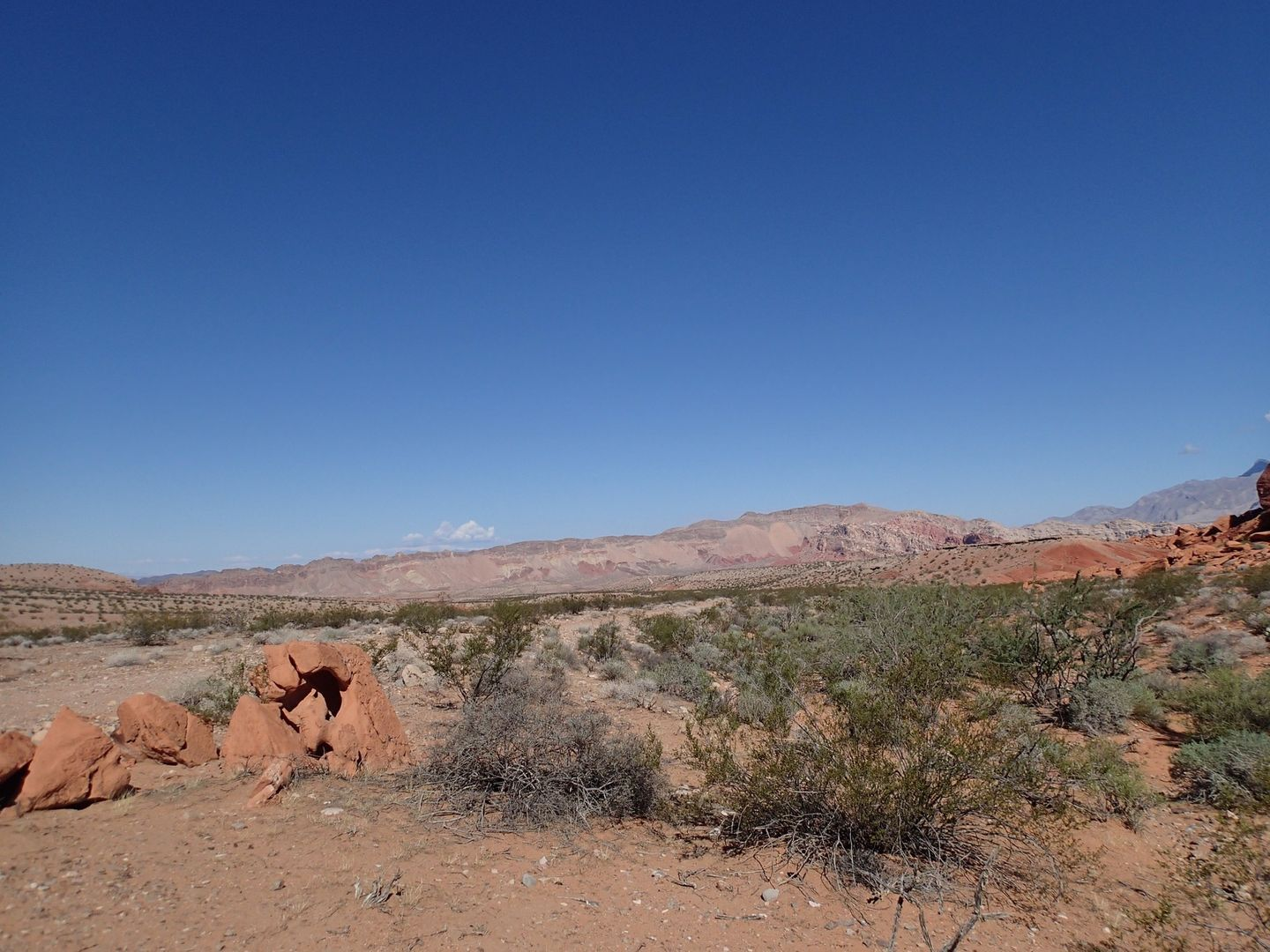 Camping: Gold Butte Backcountry Byway