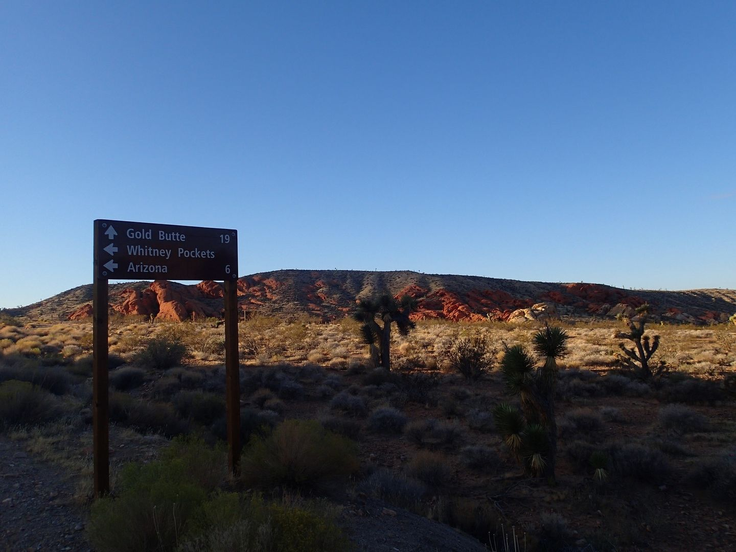 Gold Butte Backcountry Byway - Waypoint 8: Whitney Pockets Intersection