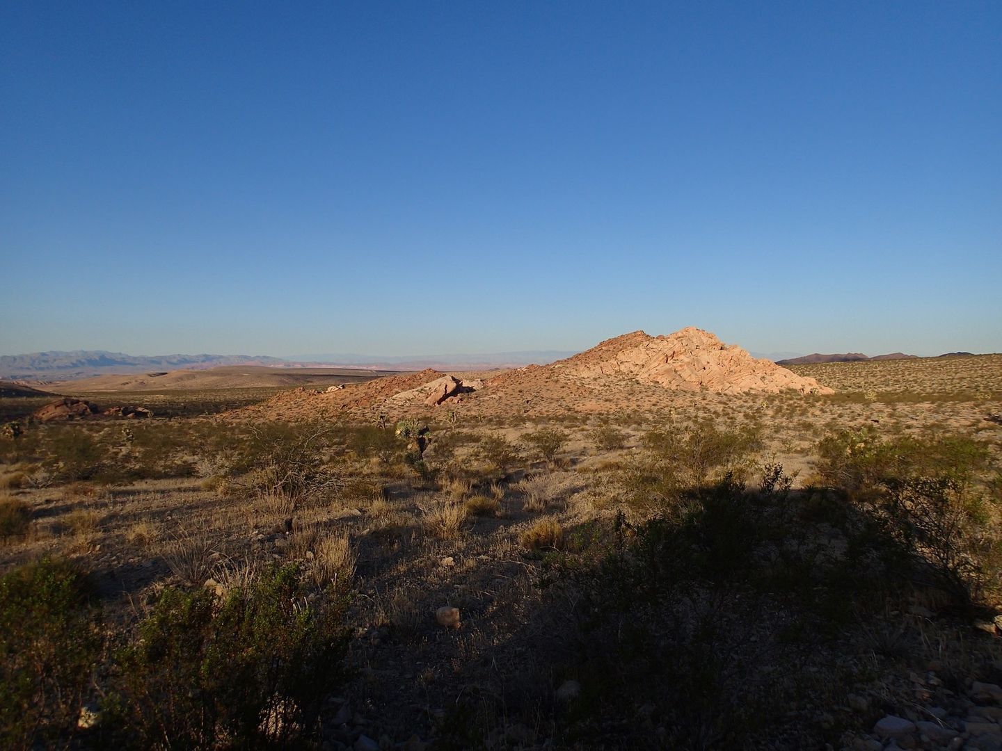 Gold Butte Backcountry Byway - Waypoint 7: Limited Use Area