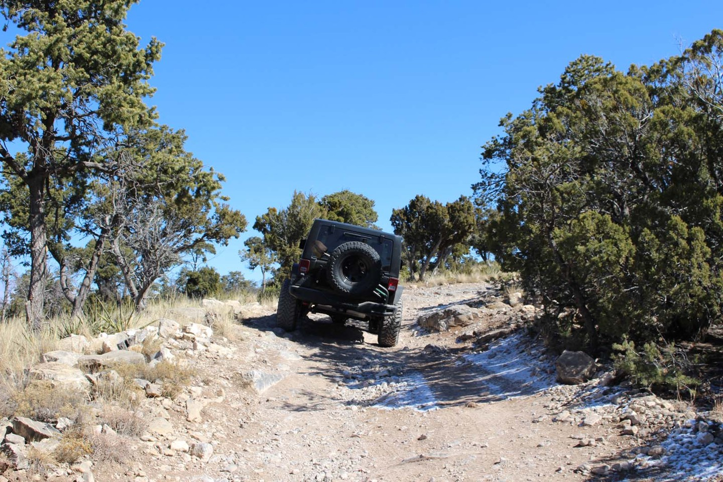 Trail Review: Chamisoso Canyon