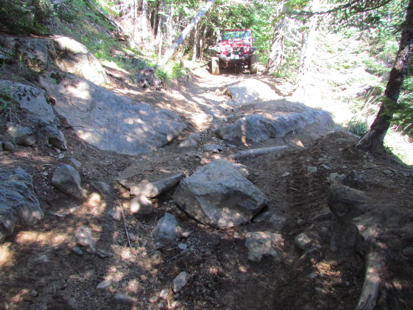 Evans Creek / Trail #519 - Waypoint 7: Dangerous Obstacle