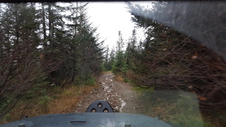 Evans Creek / Trail #519 - Waypoint 9: End