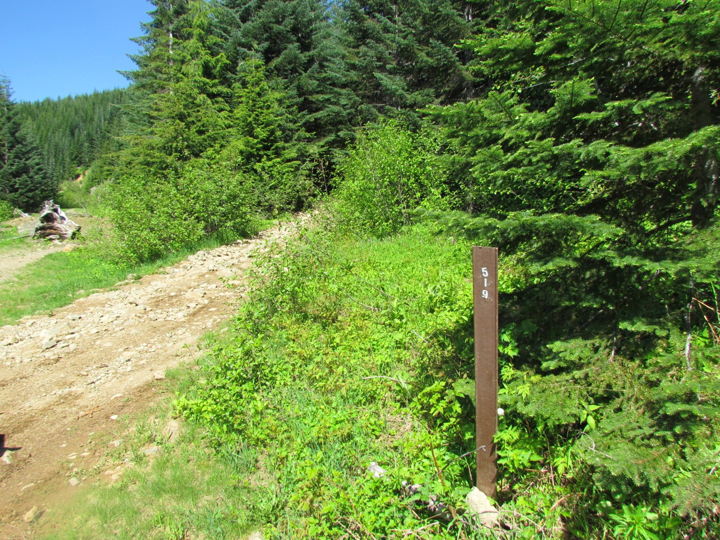 Evans Creek / Trail #519 - Waypoint 1: Trailhead / Start