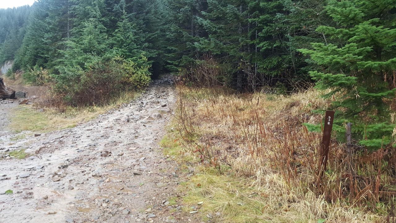 Evans Creek / Trail #519 - Waypoint 1: Trailhead