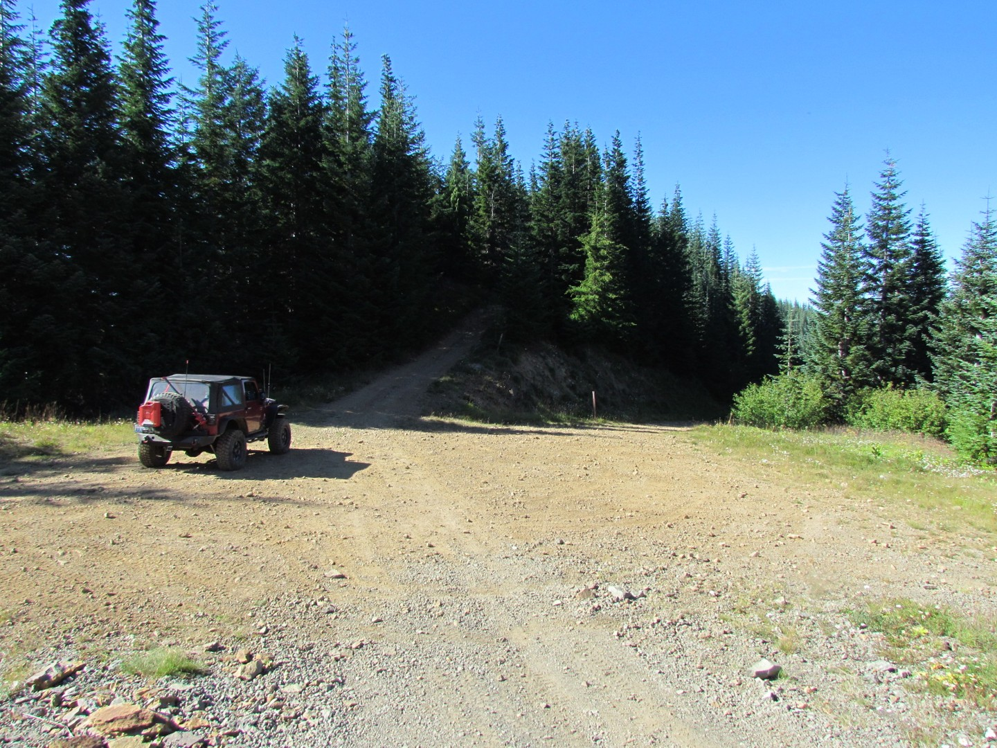 Evans Creek / Trail #519 - Waypoint 5: Trail Intersection / Straight
