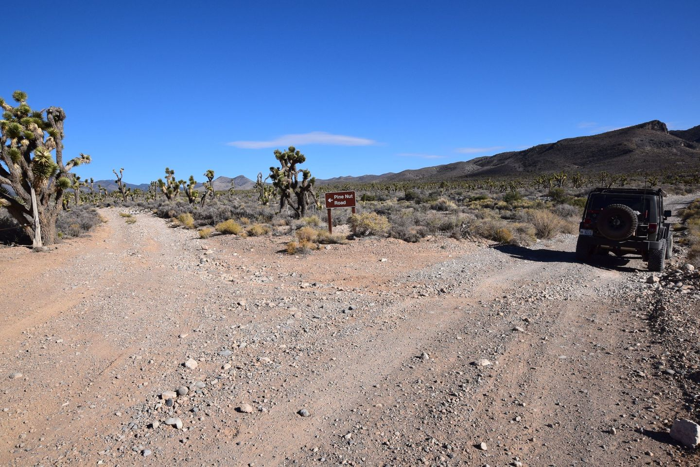 Pine Nut Road - Waypoint 1: Trailhead