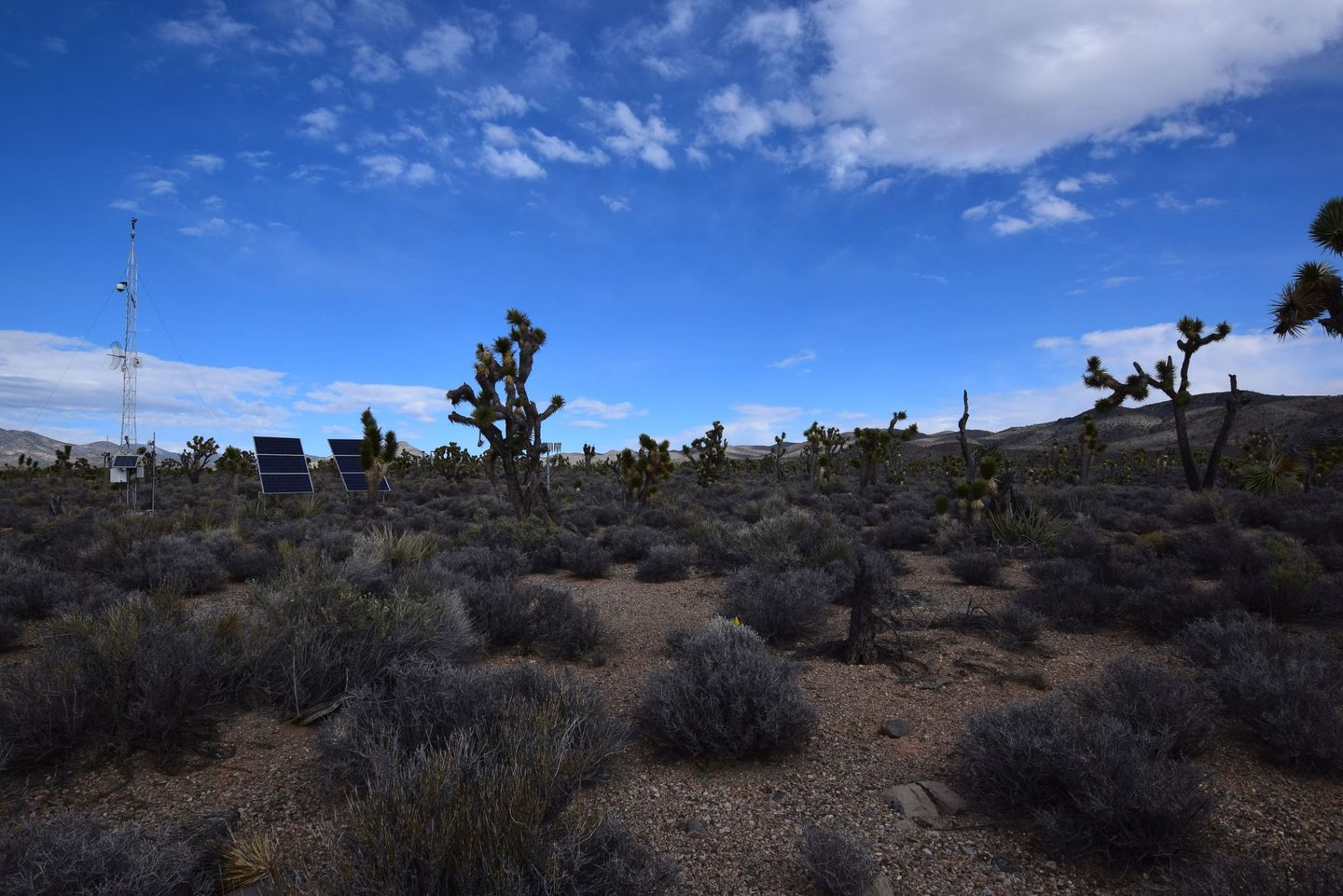Pine Nut Road - Waypoint 3: Weather Station
