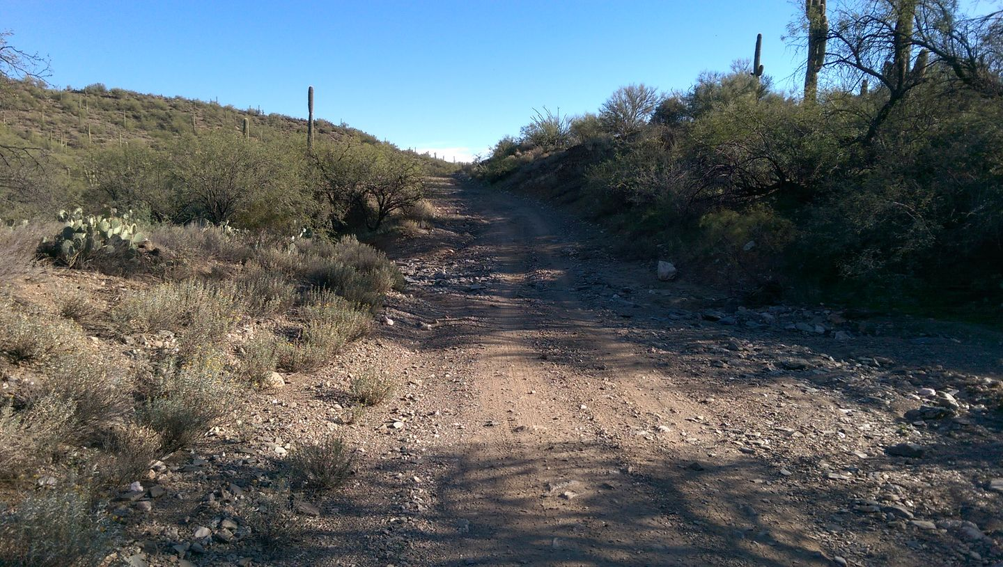 Black Canyon OHV Trail - Waypoint 3: 9958 & TV5 intersection