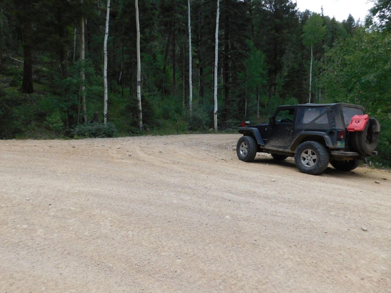 Greenie Peak - Waypoint 2: Right Fork FR54K