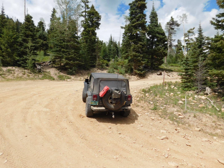 Greenie Peak - Waypoint 3: 54H Fork