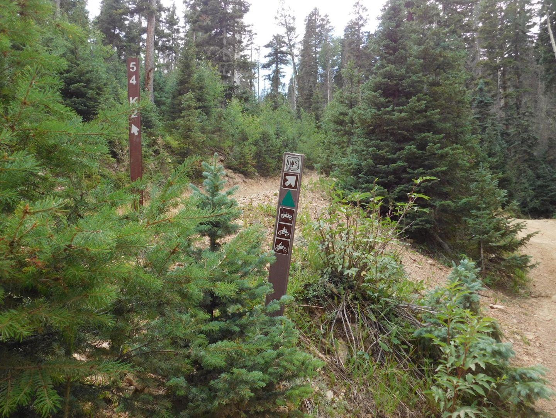 Greenie Peak - Waypoint 4: Green Triangle 1st