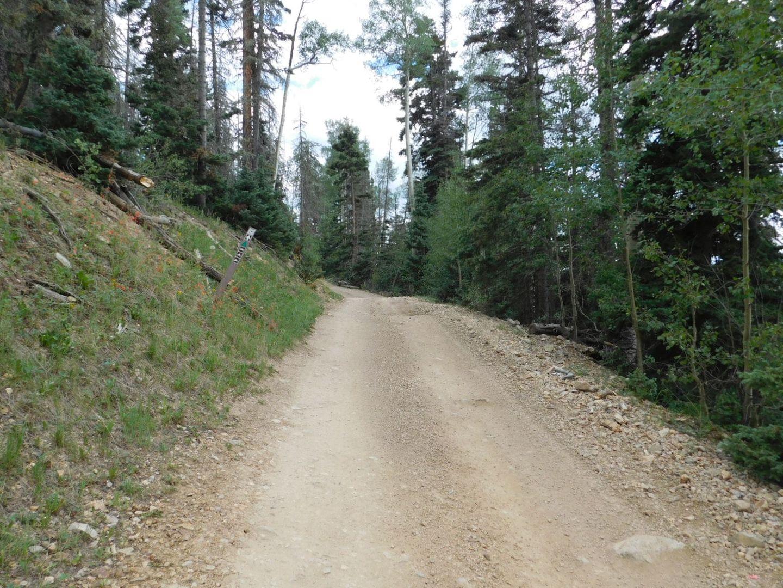 Greenie Peak - Waypoint 5: Green Triangle 2nd