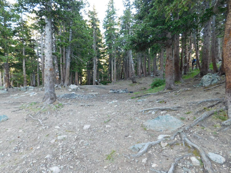 Camping: Goose Lake