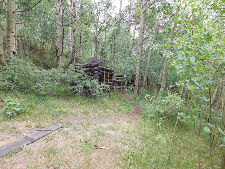 Goose Lake - Waypoint 4: Cabin Cluster