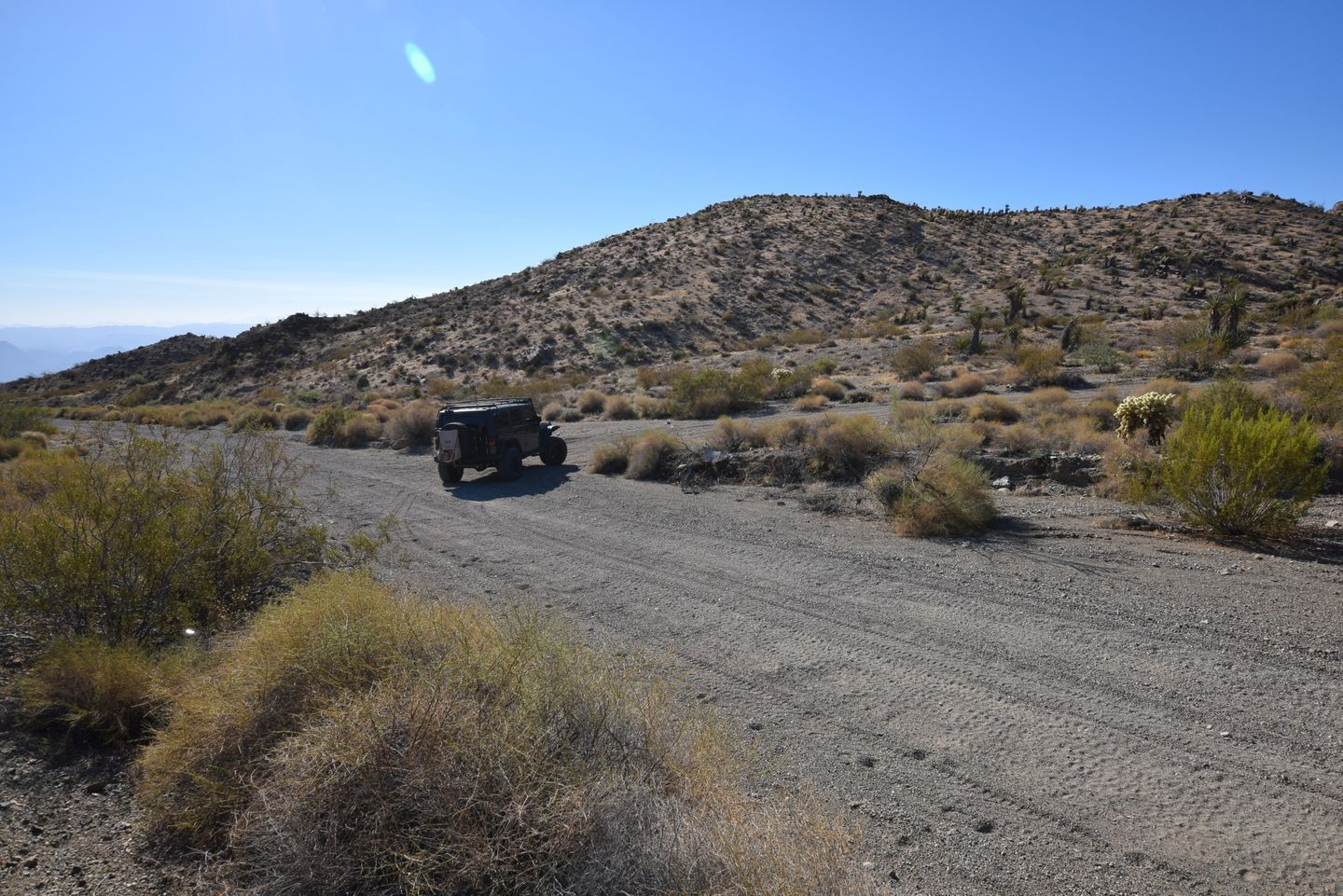 Nelson Goldmine Trail - Waypoint 3: Y intersection