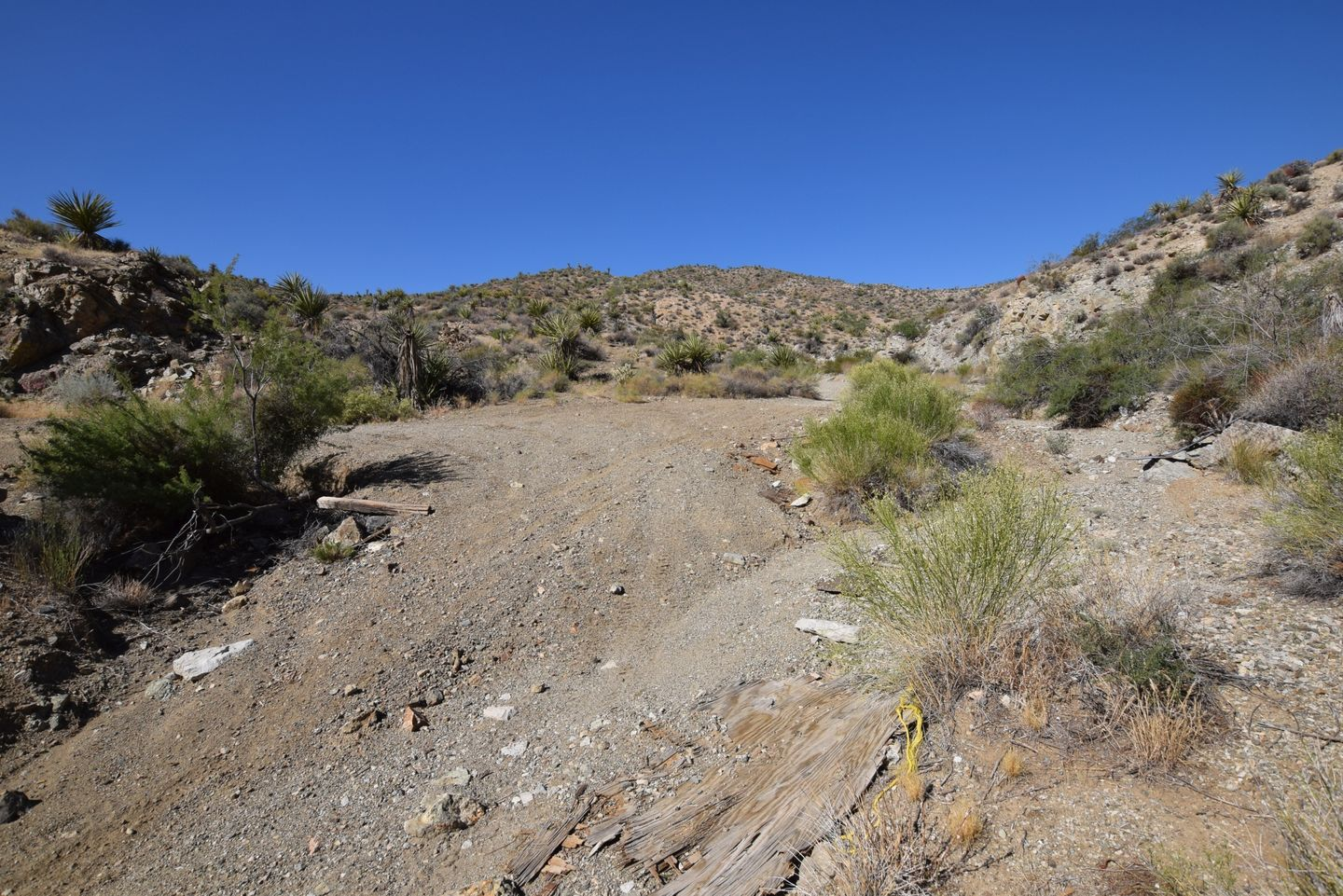Nelson Goldmine Trail - Waypoint 9: T Intersection