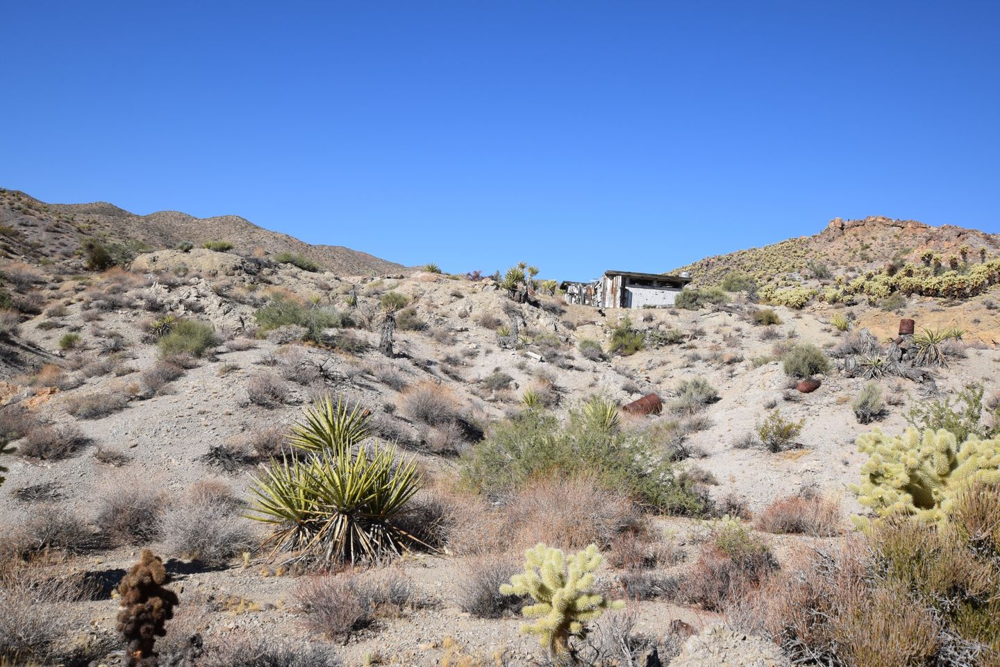 Nelson Goldmine Trail - Waypoint 4: Abandoned Structure