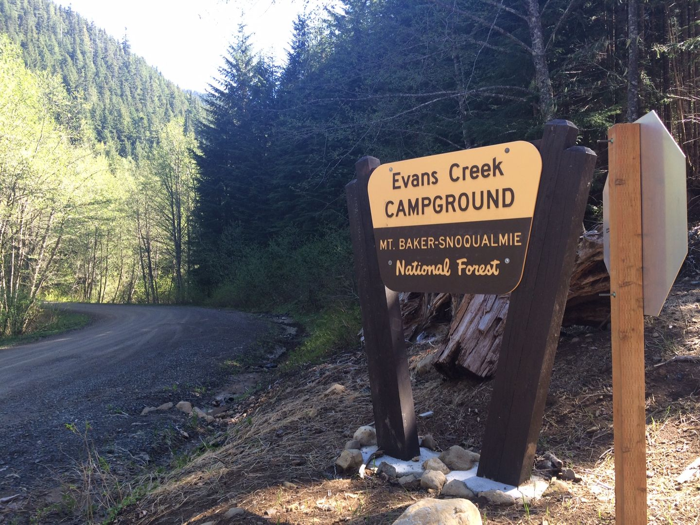 Camping: Evans Creek / Trail #102
