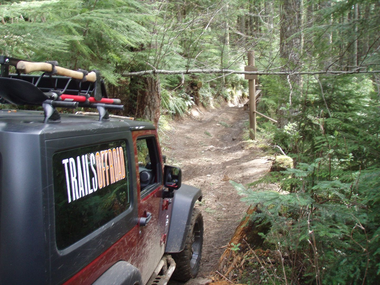 Evans Creek / Trail #102 - Waypoint 7: Trail Intersection