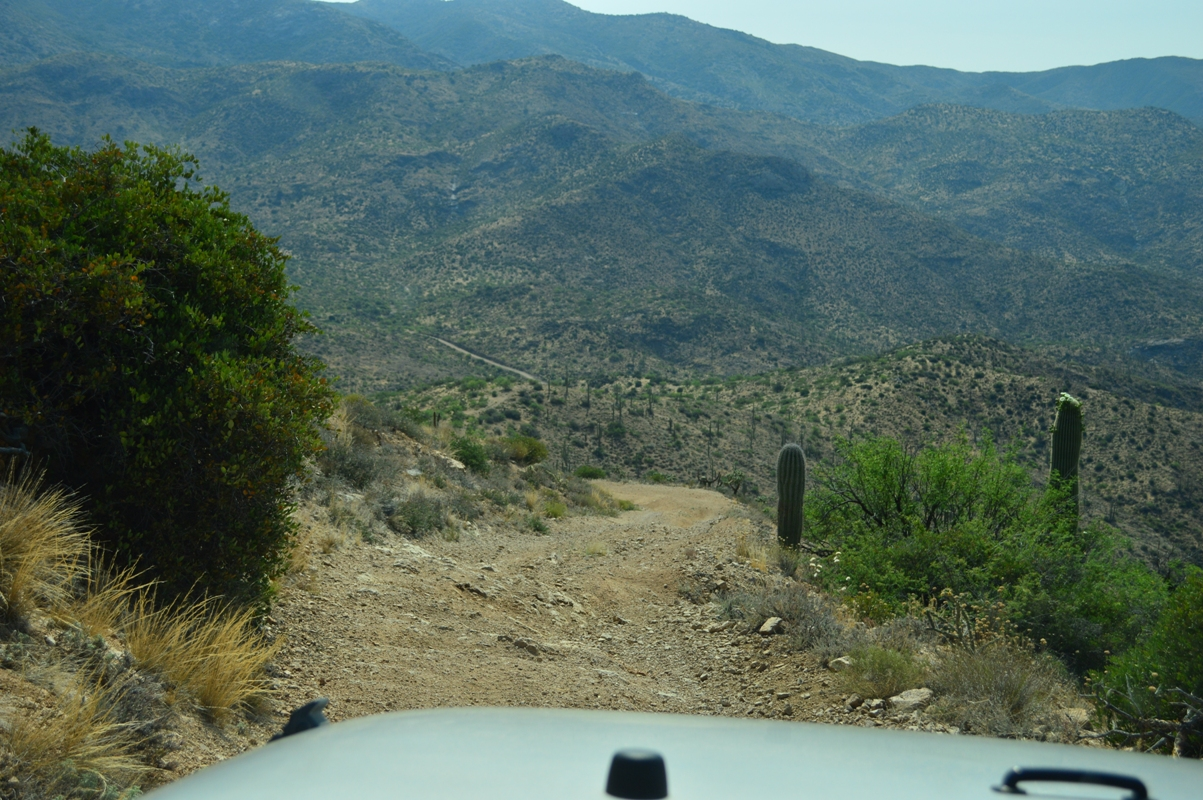 Millsite Canyon Trail Arizona - Waypoint 15: CATTLE FENCE / STEEP DOWN HILL