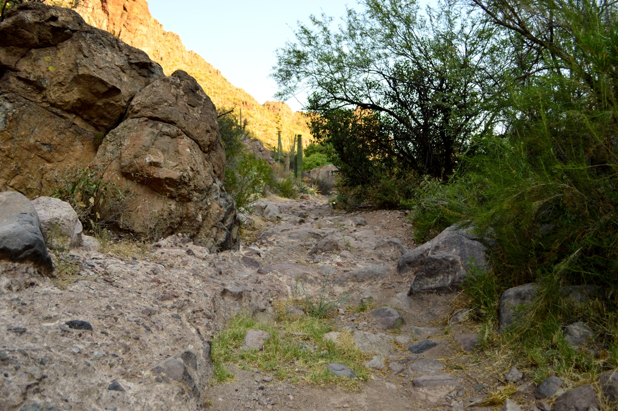 Millsite Canyon Trail Arizona - Waypoint 11: ROCK LEDGE