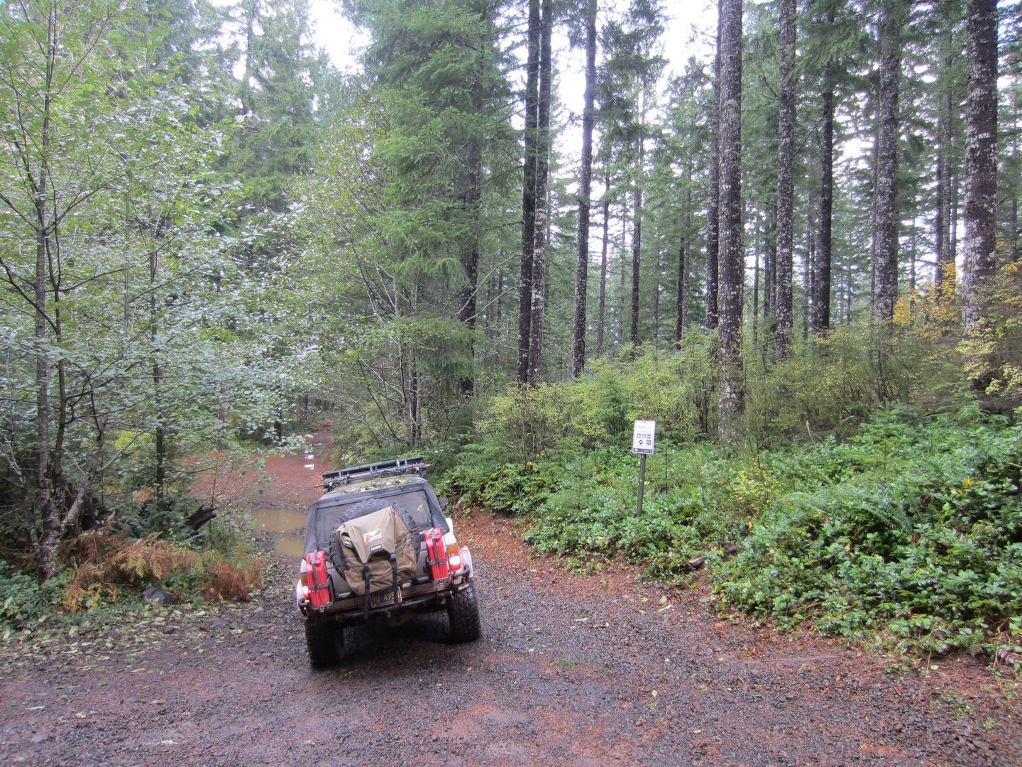 Firebreak Five / Tillamook State Forest - Waypoint 1: Trailhead
