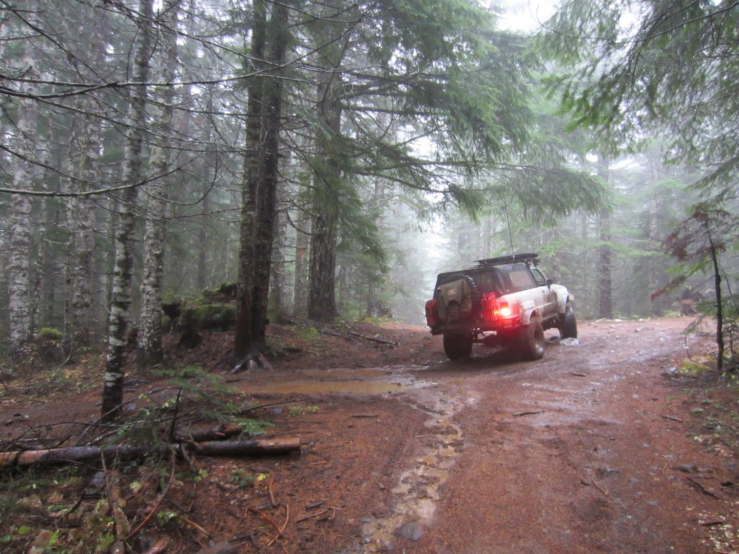 Firebreak Five / Tillamook State Forest - Waypoint 10: Continue Straight -- Other Path Goes Back to Waypoint 08