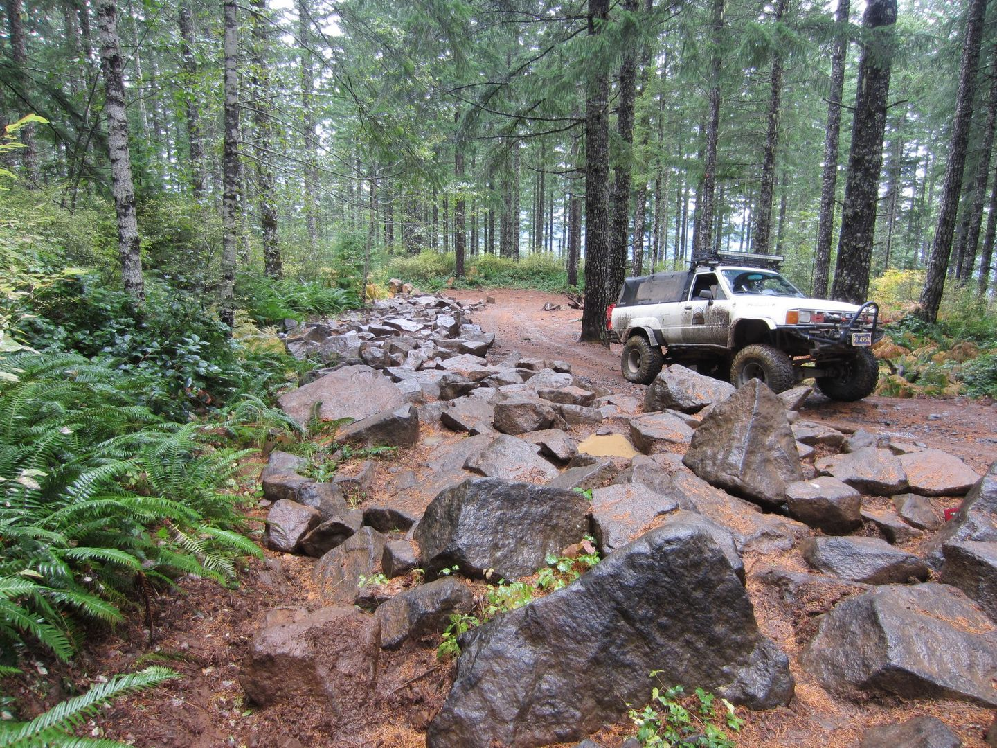 Firebreak Five / Tillamook State Forest - Waypoint 5: Optional Rock Garden Play Area