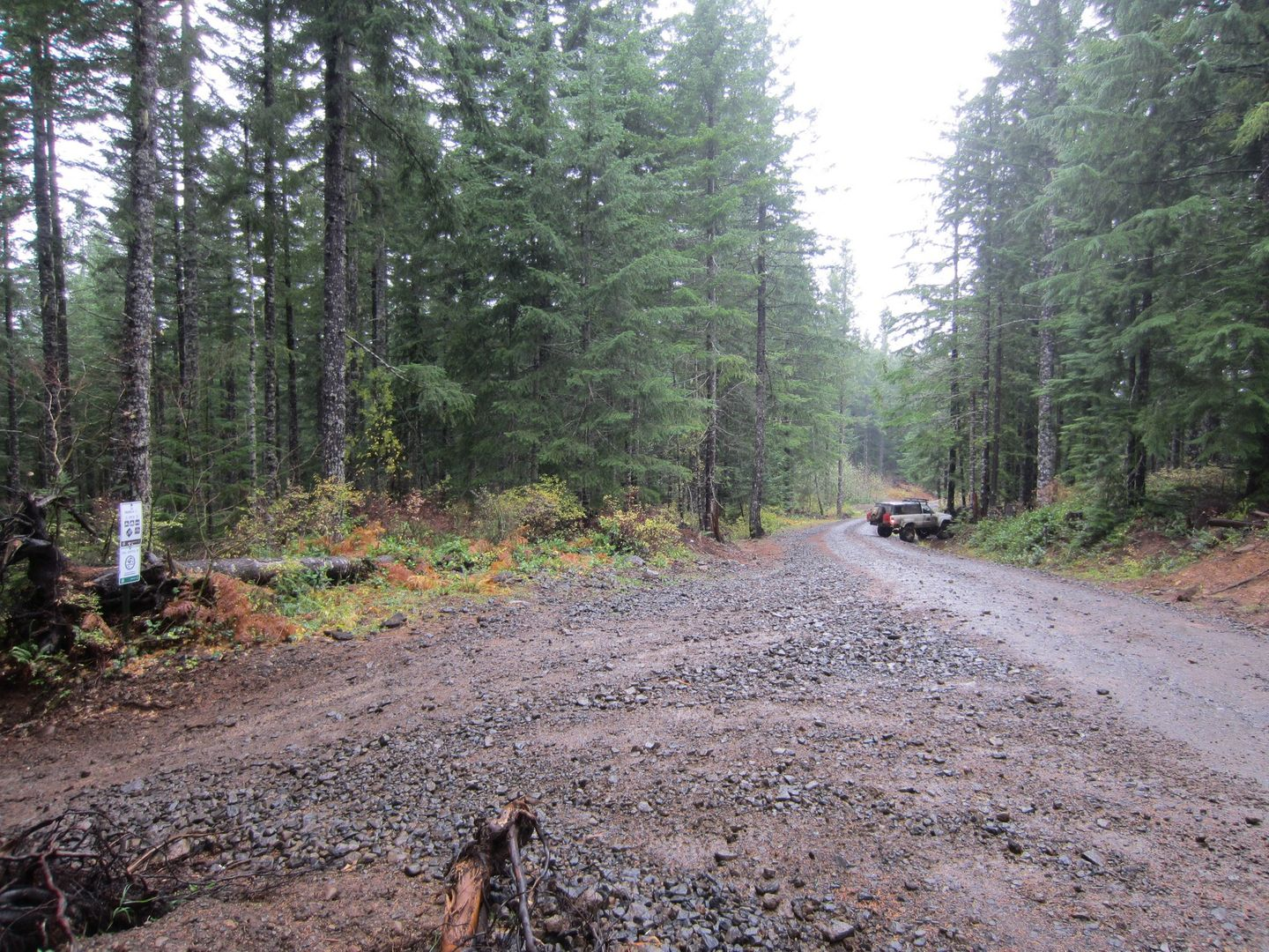 Firebreak Five / Tillamook State Forest - Waypoint 7: Go Left and Then Right Across Gravel Road