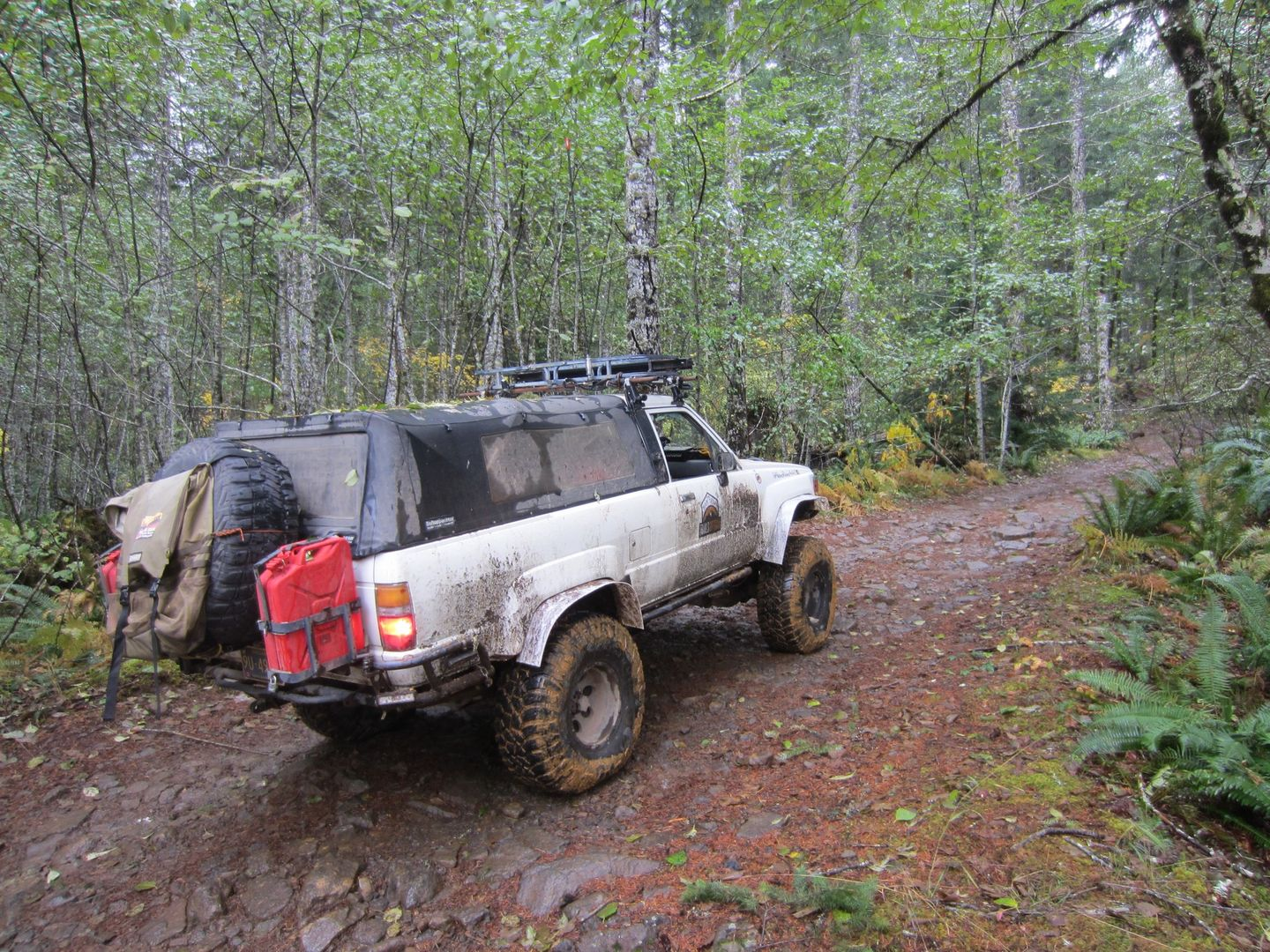 Firebreak Five / Tillamook State Forest - Waypoint 2: Continue Straight for Challenging Section -- Right Goes to Gravel Road