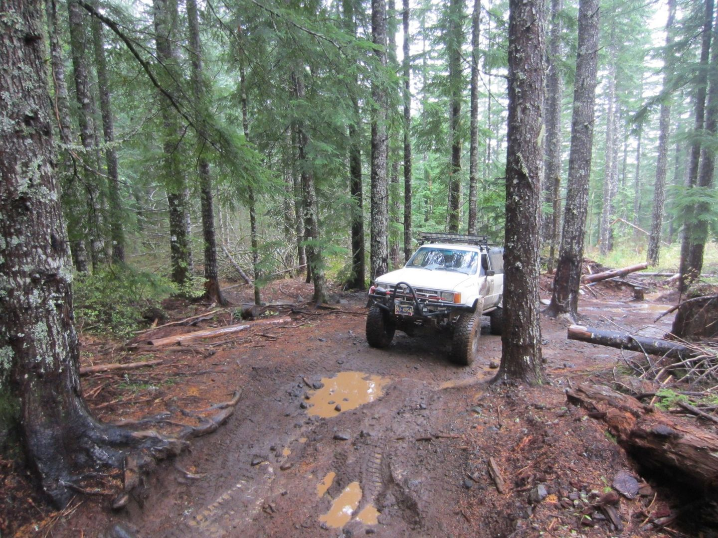 Firebreak Five / Tillamook State Forest - Waypoint 8: Both Paths Connect to the Same Place -- Left Path is More Challenging